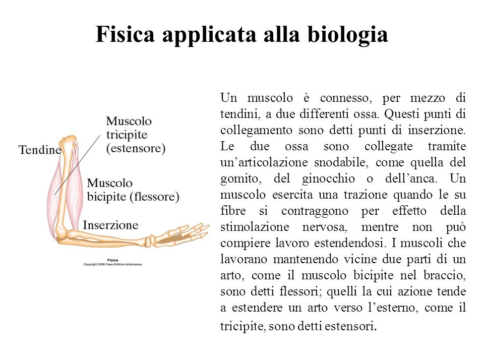 Fisica applicata alla biologia