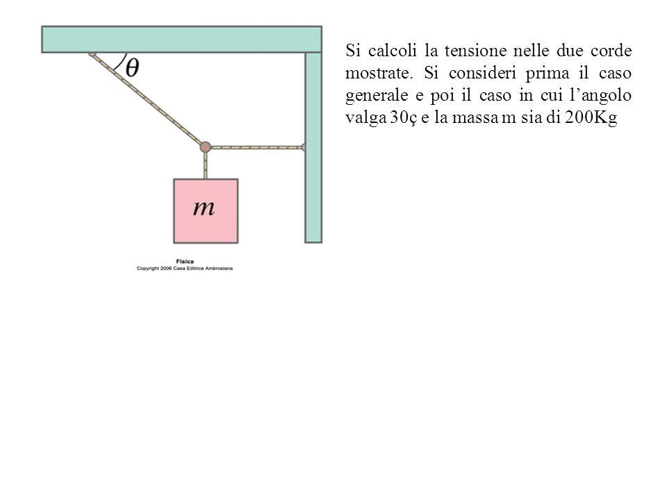 Si calcoli la tensione nelle due corde mostrate