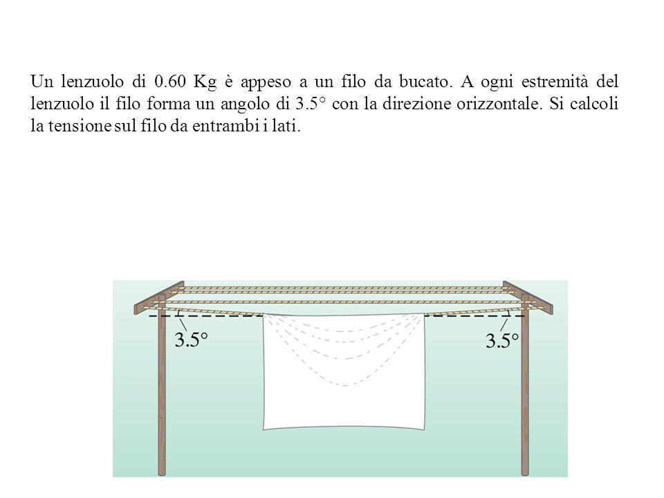 Un lenzuolo di 0. 60 Kg è appeso a un filo da bucato
