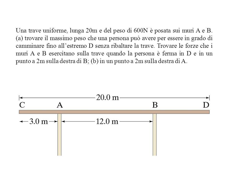 Una trave uniforme, lunga 20m e del peso di 600N è posata sui muri A e B.