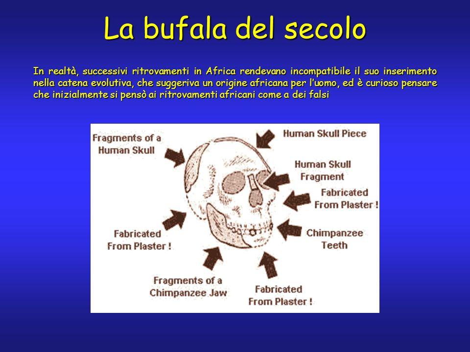 La bufala del secolo
