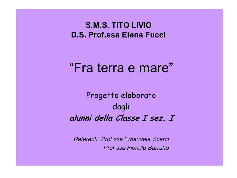 S.M.S. TITO LIVIO D.S. Prof.ssa Elena Fucci