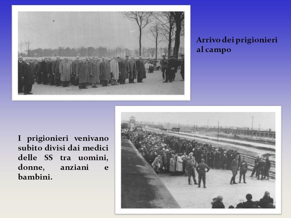 Arrivo dei prigionieri al campo