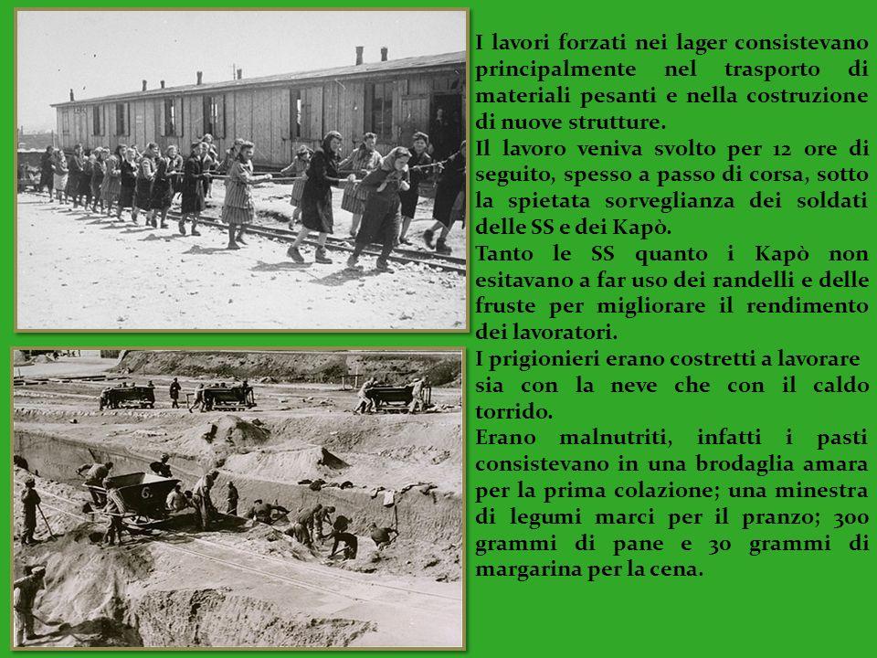 I lavori forzati nei lager consistevano principalmente nel trasporto di materiali pesanti e nella costruzione di nuove strutture.