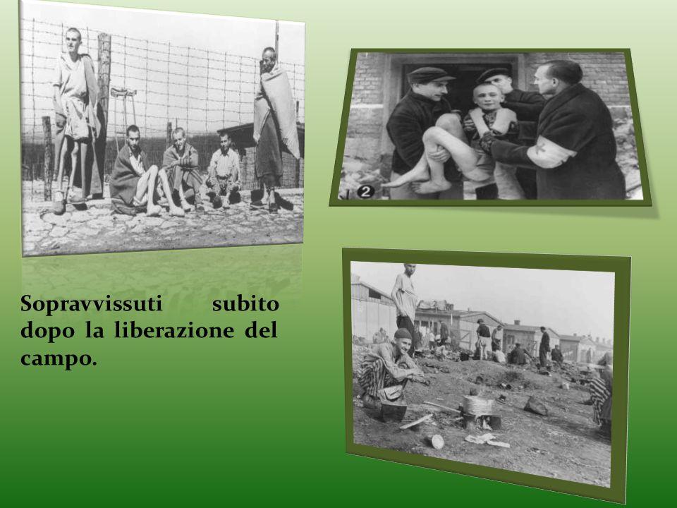 Sopravvissuti subito dopo la liberazione del campo.