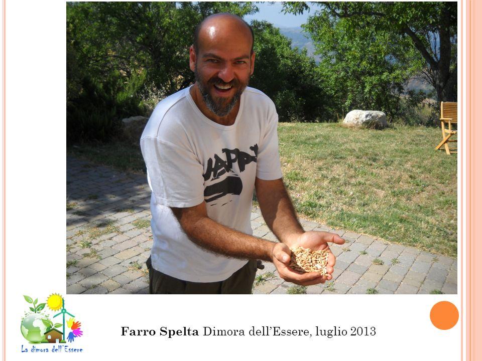Farro Spelta Dimora dell'Essere, luglio 2013