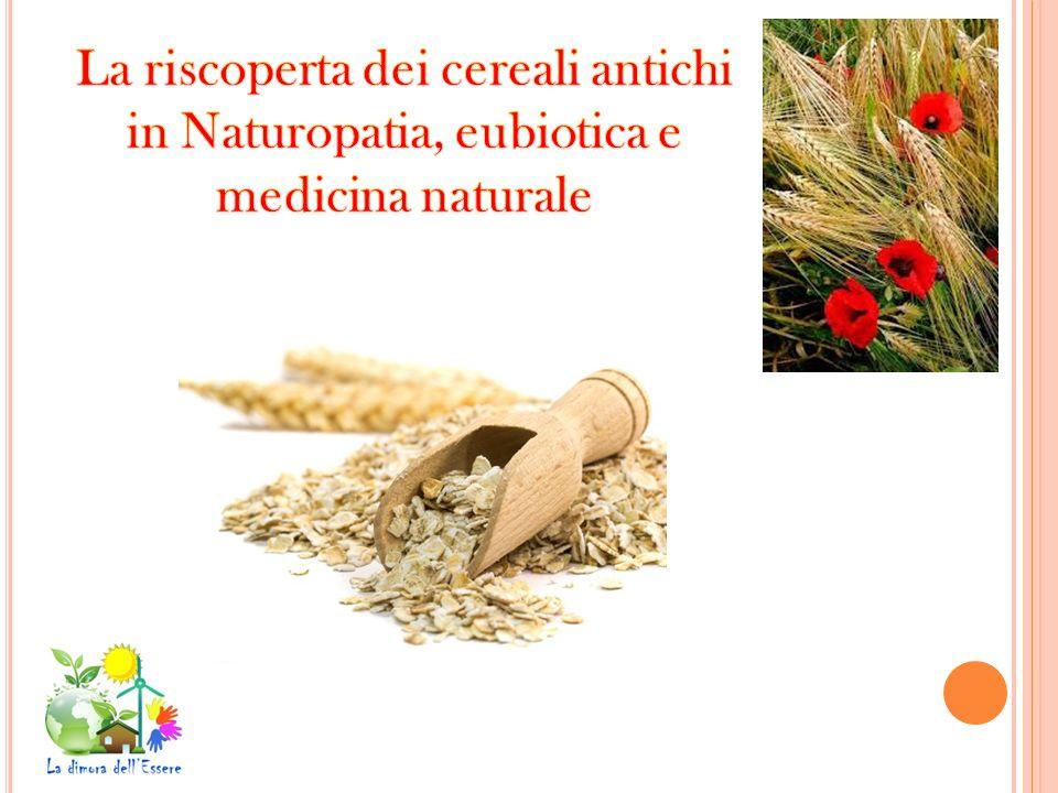 La riscoperta dei cereali antichi in Naturopatia, eubiotica e medicina naturale