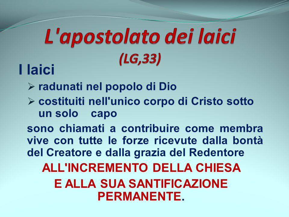 L apostolato dei laici (LG,33)