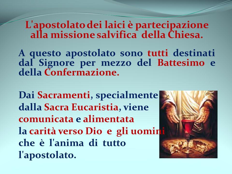 L apostolato dei laici è partecipazione alla missione salvifica della Chiesa.
