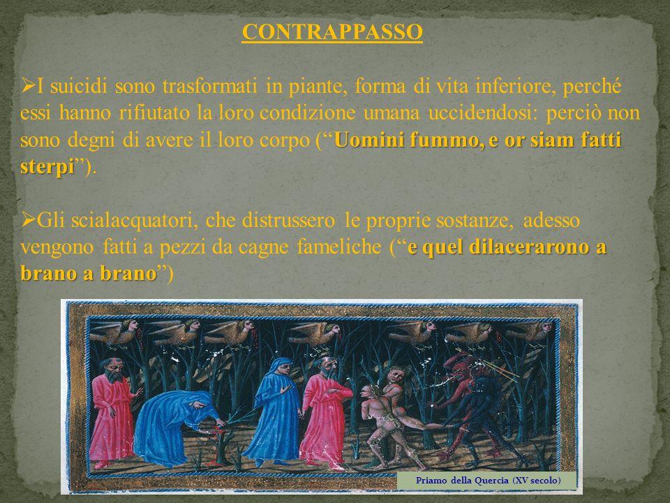 Priamo della Quercia (XV secolo)