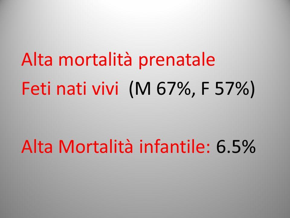 Alta mortalità prenatale