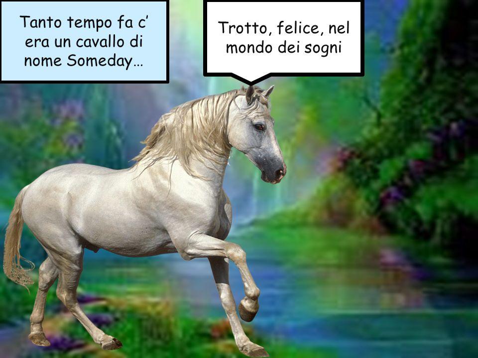 Tanto tempo fa c' era un cavallo di nome Someday…