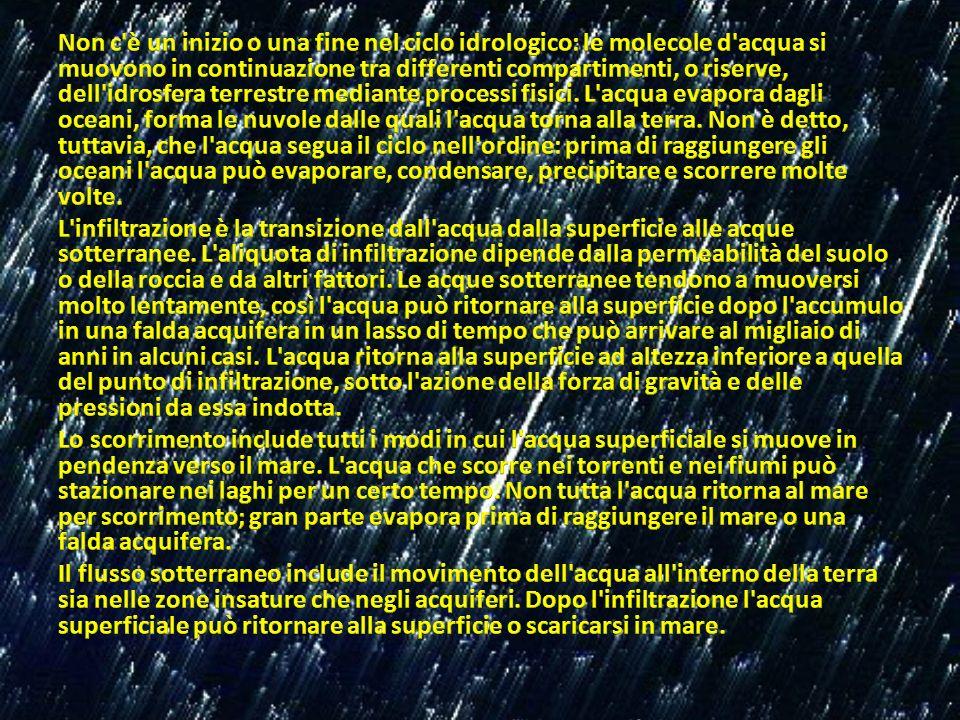 Non c è un inizio o una fine nel ciclo idrologico: le molecole d acqua si muovono in continuazione tra differenti compartimenti, o riserve, dell idrosfera terrestre mediante processi fisici.