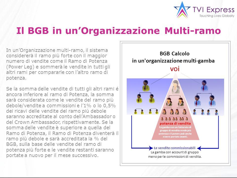 Il BGB in un'Organizzazione Multi-ramo