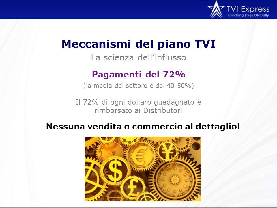 Meccanismi del piano TVI