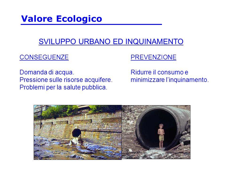 Valore Ecologico SVILUPPO URBANO ED INQUINAMENTO CONSEGUENZE