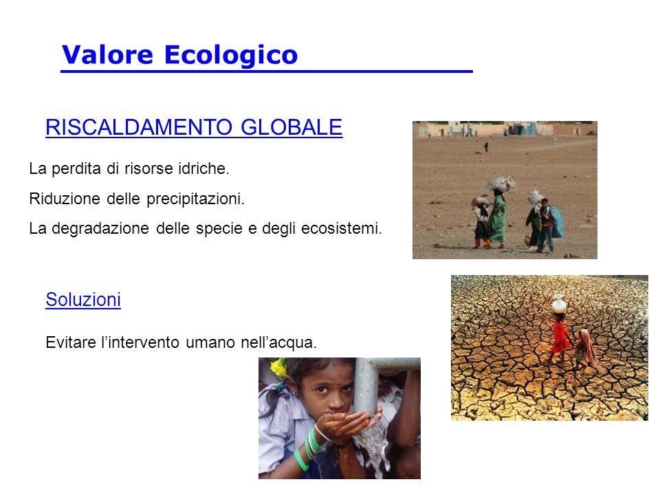 Valore Ecologico RISCALDAMENTO GLOBALE Soluzioni