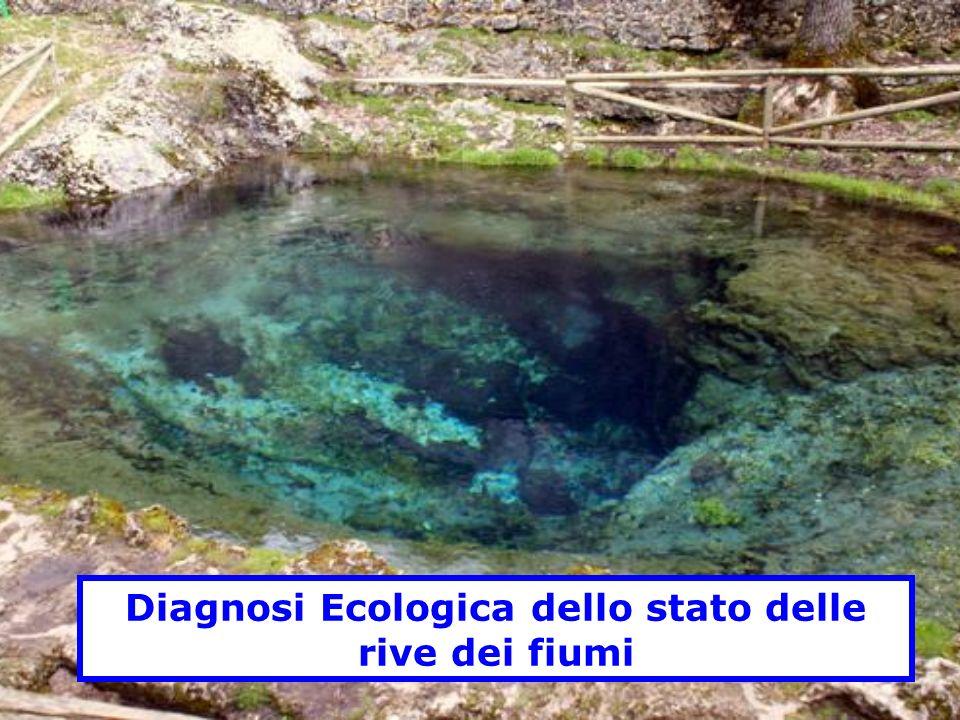 Diagnosi Ecologica dello stato delle rive dei fiumi
