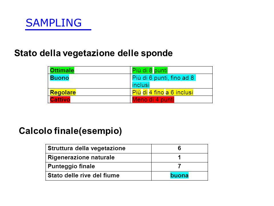 SAMPLING Stato della vegetazione delle sponde Calcolo finale(esempio)