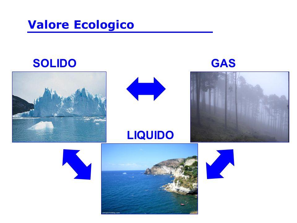 Valore Ecologico SOLIDO GAS LIQUIDO