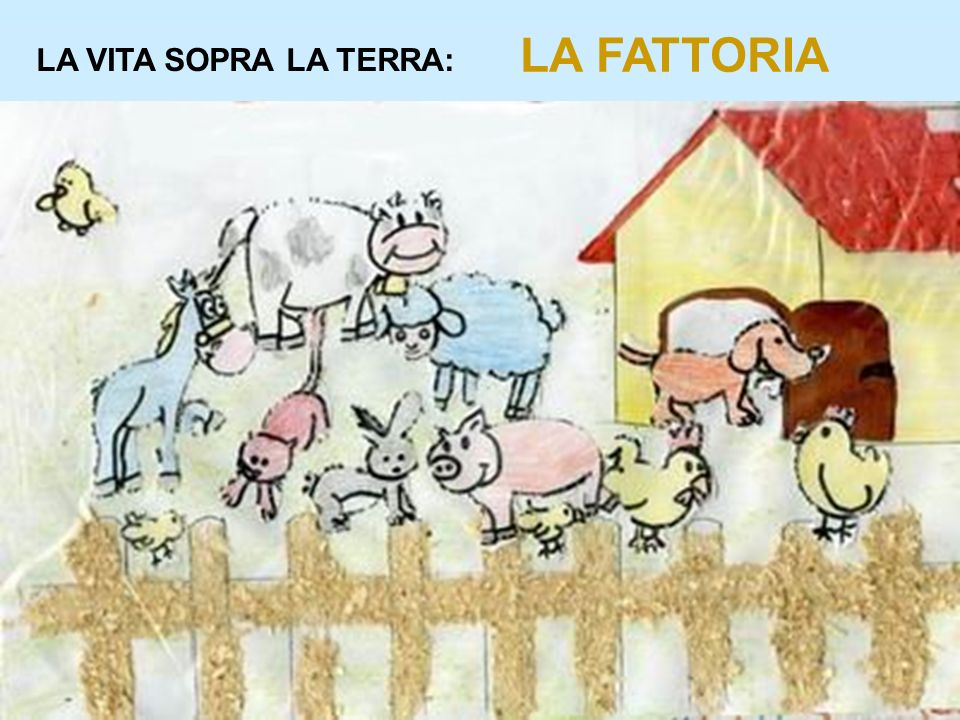 LA FATTORIA LA VITA SOPRA LA TERRA: