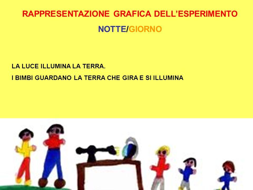 RAPPRESENTAZIONE GRAFICA DELL'ESPERIMENTO