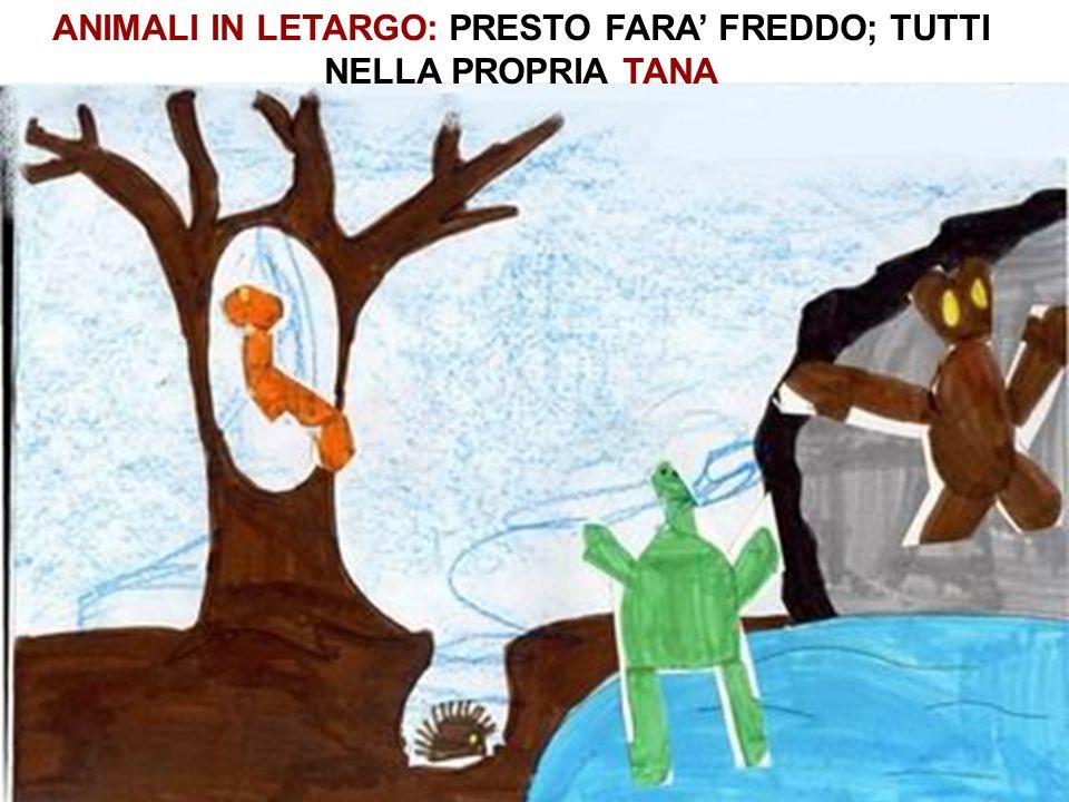 ANIMALI IN LETARGO: PRESTO FARA' FREDDO; TUTTI NELLA PROPRIA TANA