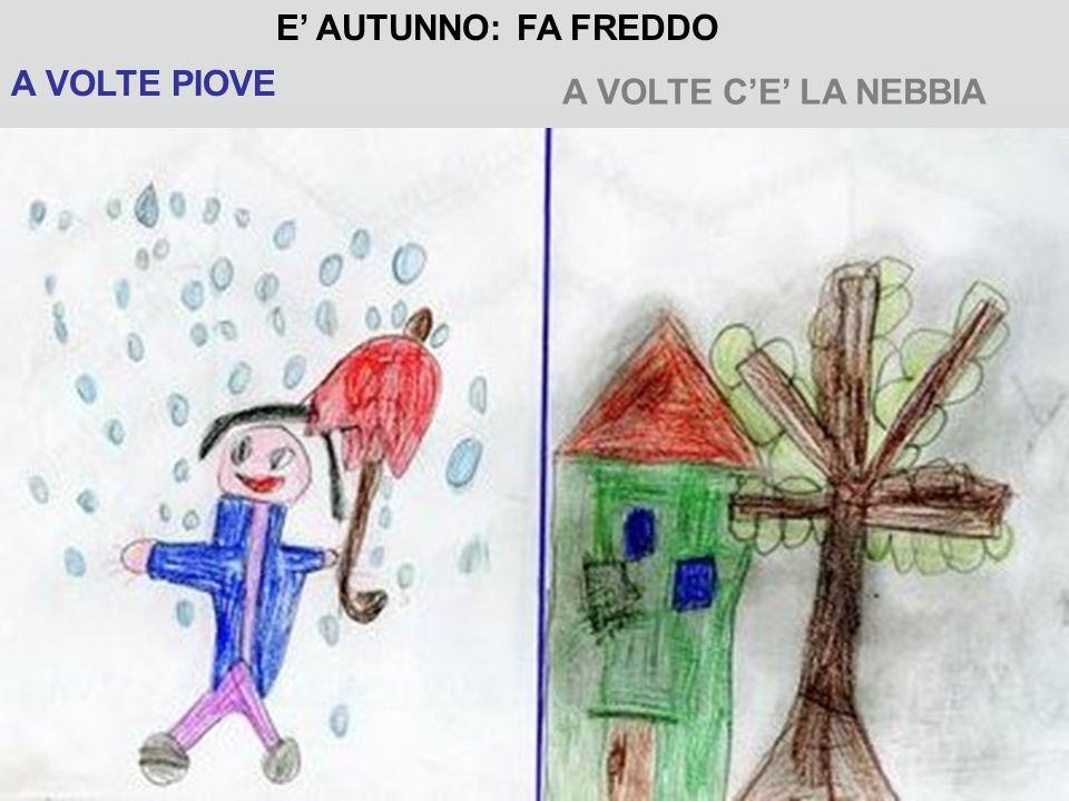 E' AUTUNNO: FA FREDDO A VOLTE PIOVE A VOLTE C'E' LA NEBBIA