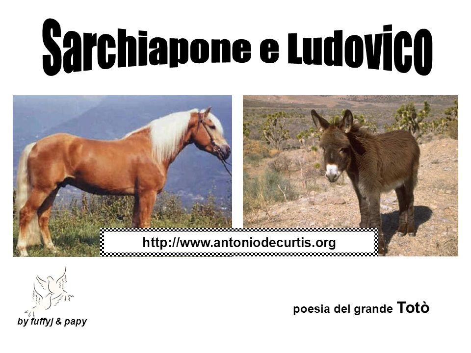 Sarchiapone e Ludovico