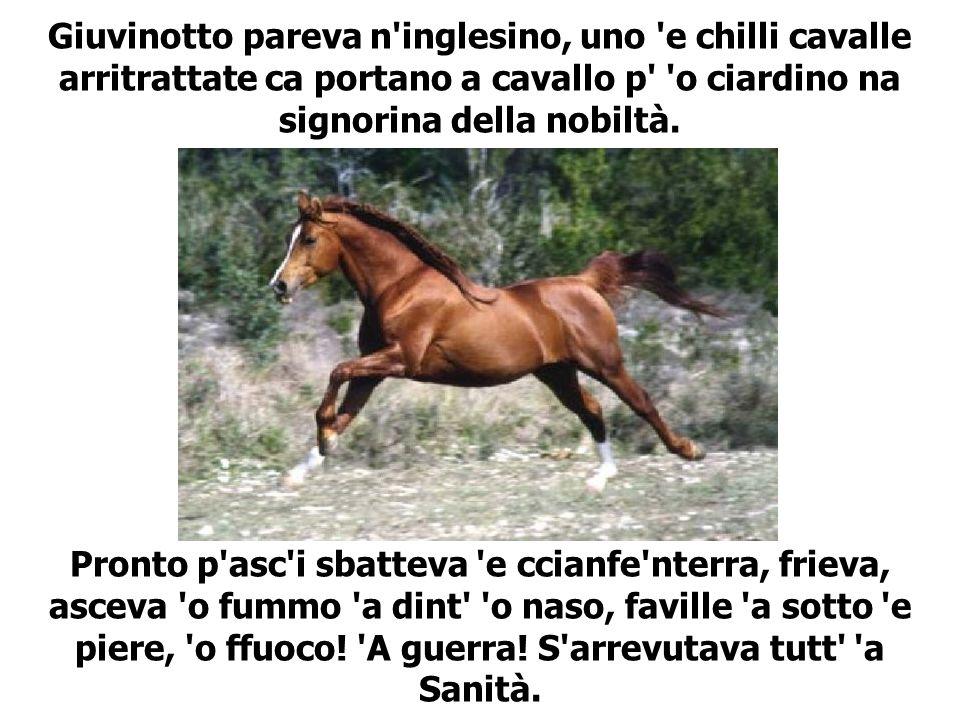 Giuvinotto pareva n inglesino, uno e chilli cavalle arritrattate ca portano a cavallo p o ciardino na signorina della nobiltà.