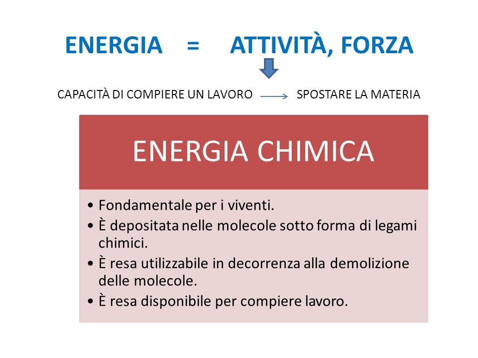 ENERGIA = ATTIVITÀ, FORZA