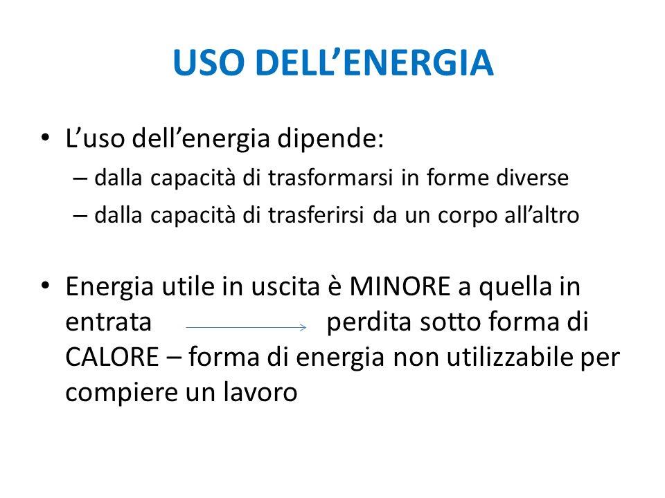 USO DELL'ENERGIA L'uso dell'energia dipende: