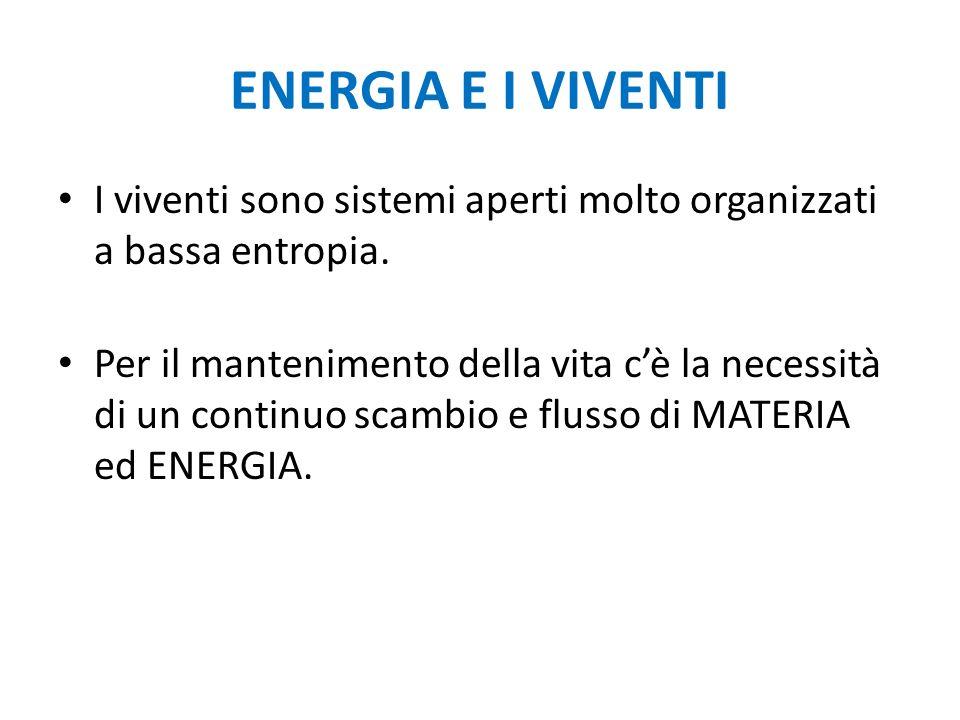ENERGIA E I VIVENTI I viventi sono sistemi aperti molto organizzati a bassa entropia.