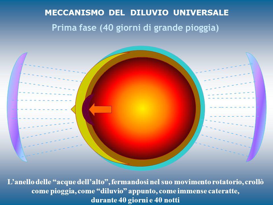 MECCANISMO DEL DILUVIO UNIVERSALE