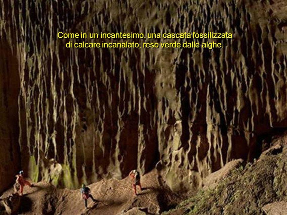Come in un incantesimo, una cascata fossilizzata di calcare incanalato, reso verde dalle alghe.