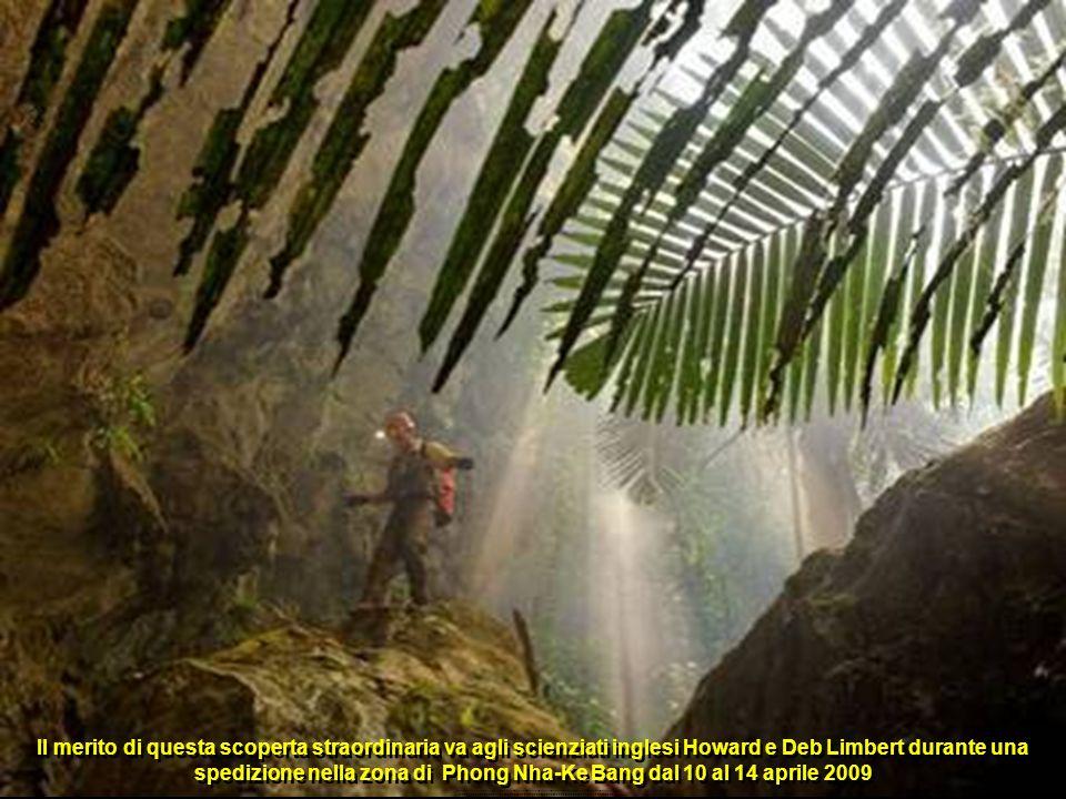Il merito di questa scoperta straordinaria va agli scienziati inglesi Howard e Deb Limbert durante una spedizione nella zona di Phong Nha-Ke Bang dal 10 al 14 aprile 2009