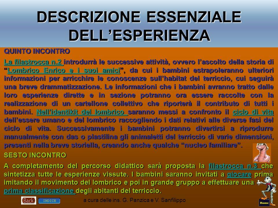 DESCRIZIONE ESSENZIALE DELL'ESPERIENZA