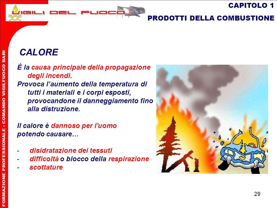 CALORE CAPITOLO 1 PRODOTTI DELLA COMBUSTIONE