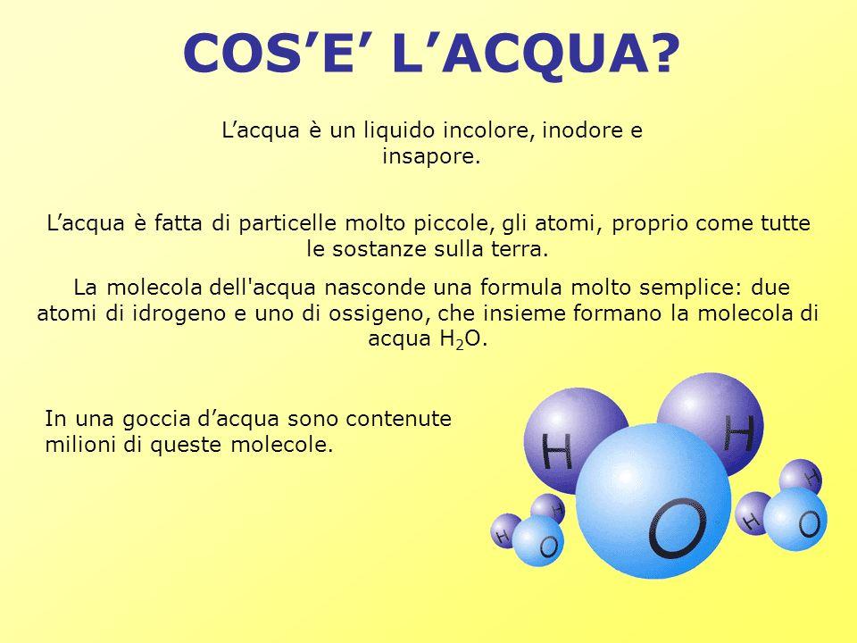 L'acqua è un liquido incolore, inodore e insapore.