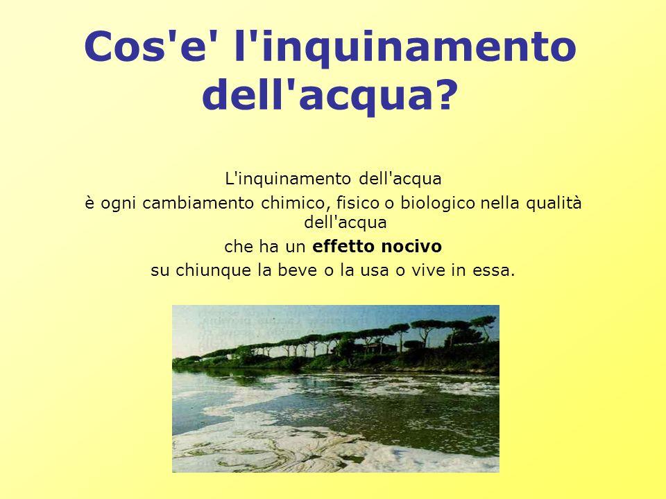 Cos e l inquinamento dell acqua