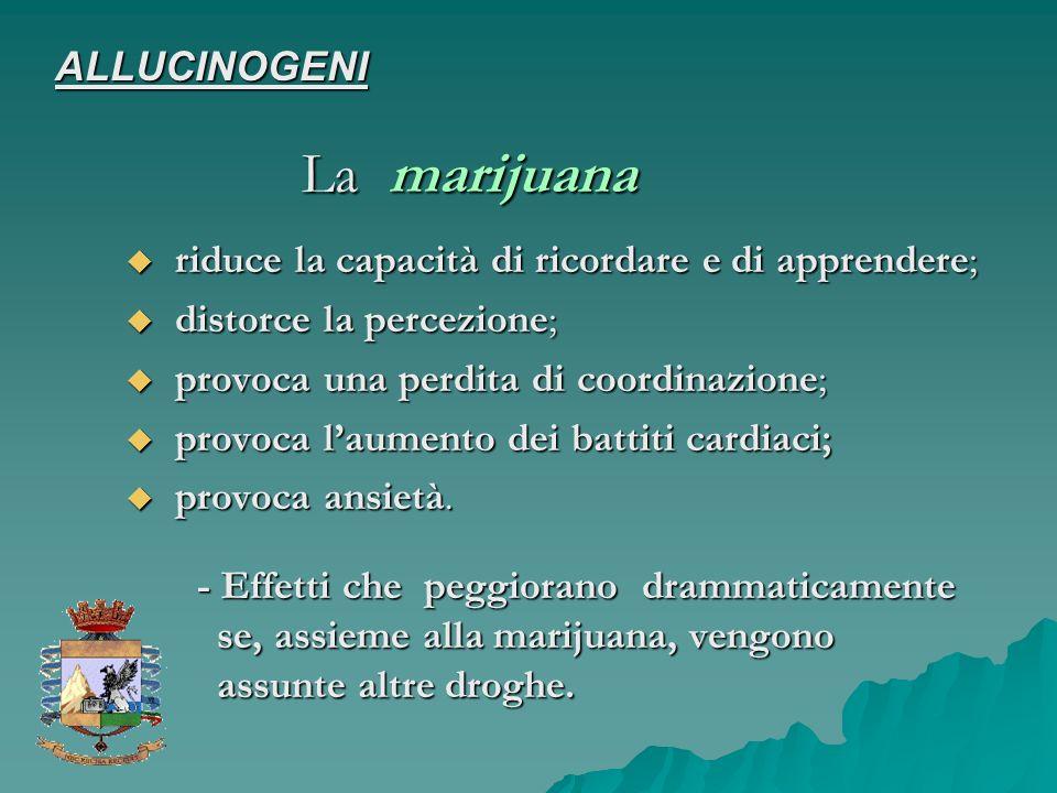 La marijuana ALLUCINOGENI