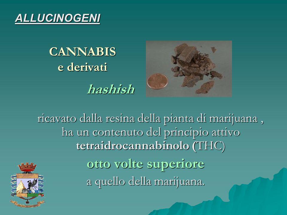 a quello della marijuana.