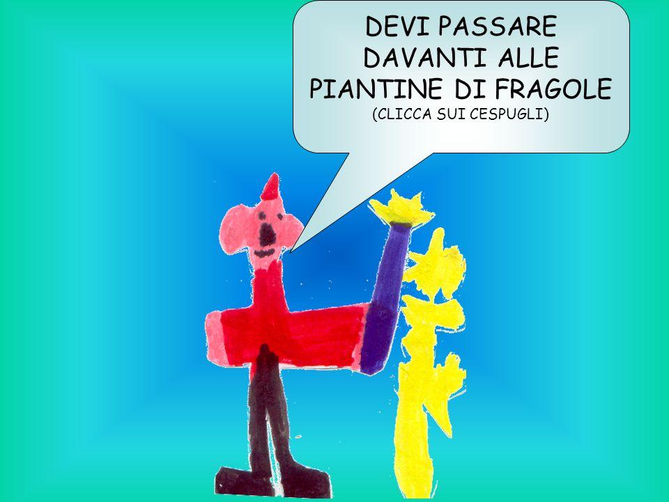 DEVI PASSARE DAVANTI ALLE PIANTINE DI FRAGOLE