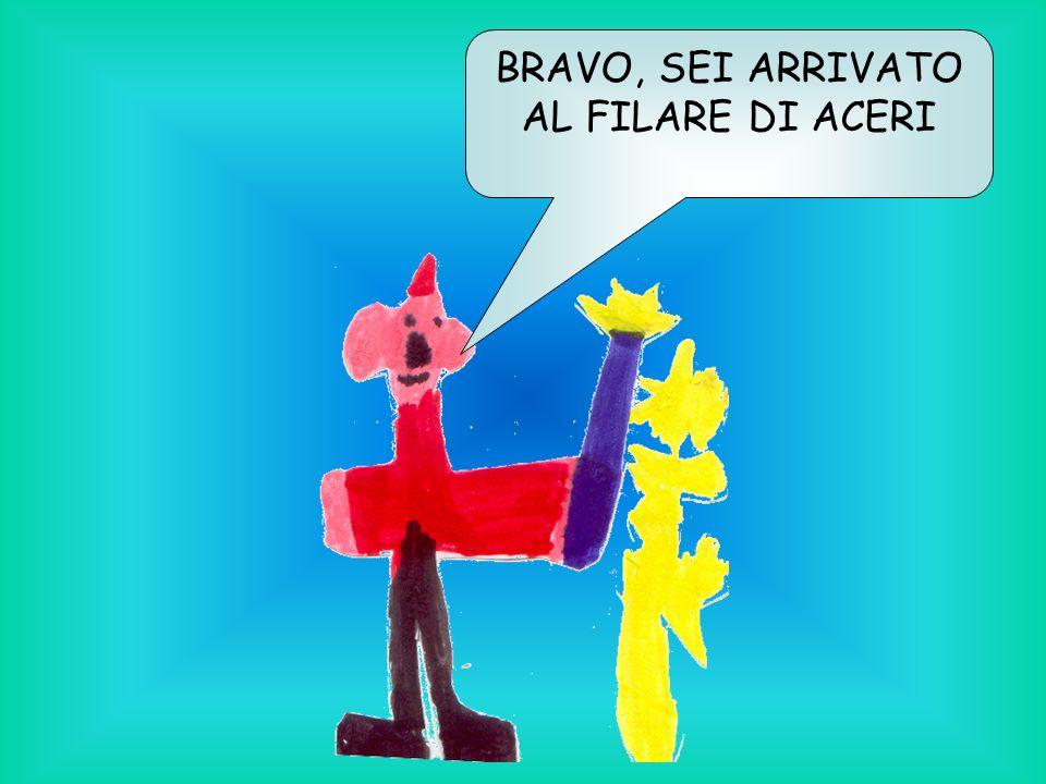 BRAVO, SEI ARRIVATO AL FILARE DI ACERI