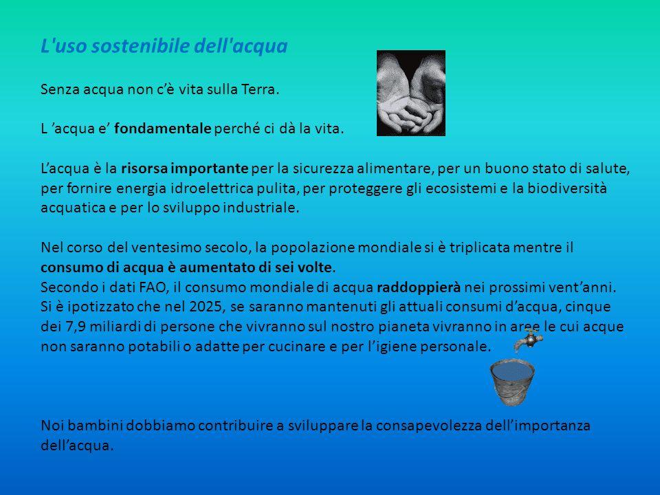 L uso sostenibile dell acqua