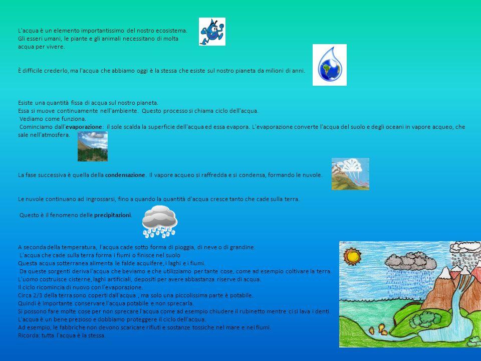 L acqua è un elemento importantissimo del nostro ecosistema.