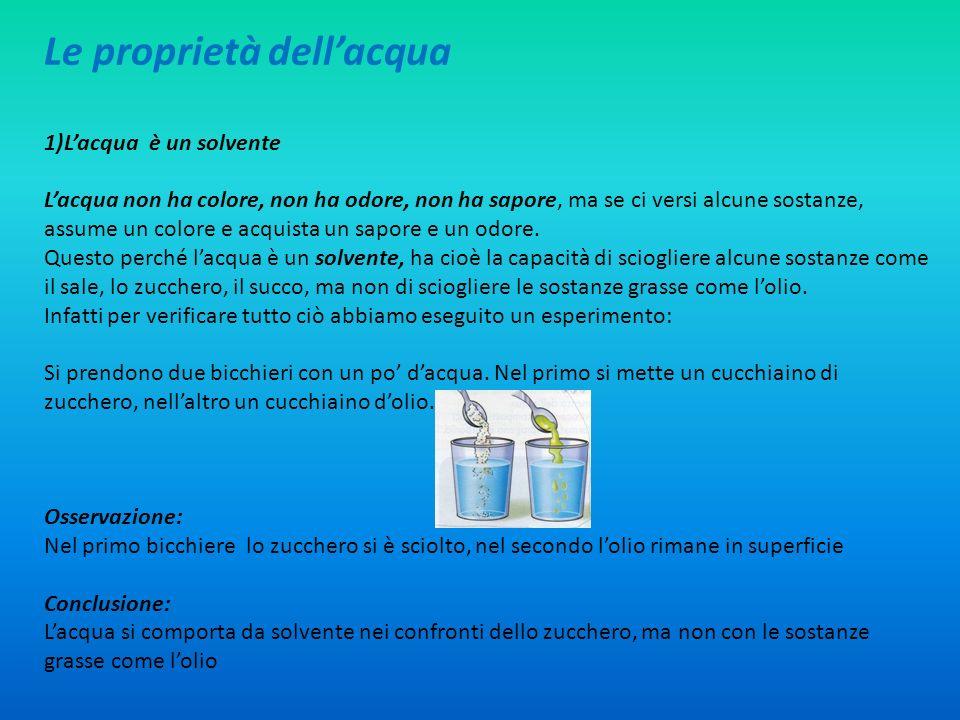 L acqua la classe iv b della scuola primaria di pile ppt for Cabina dell orso dello zucchero