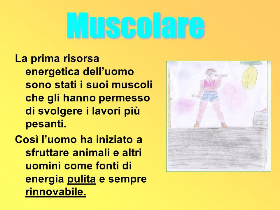 Muscolare La prima risorsa energetica dell'uomo sono stati i suoi muscoli che gli hanno permesso di svolgere i lavori più pesanti.