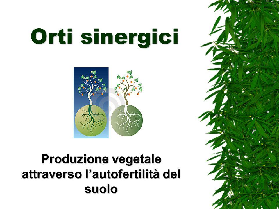 Produzione vegetale attraverso l'autofertilità del suolo