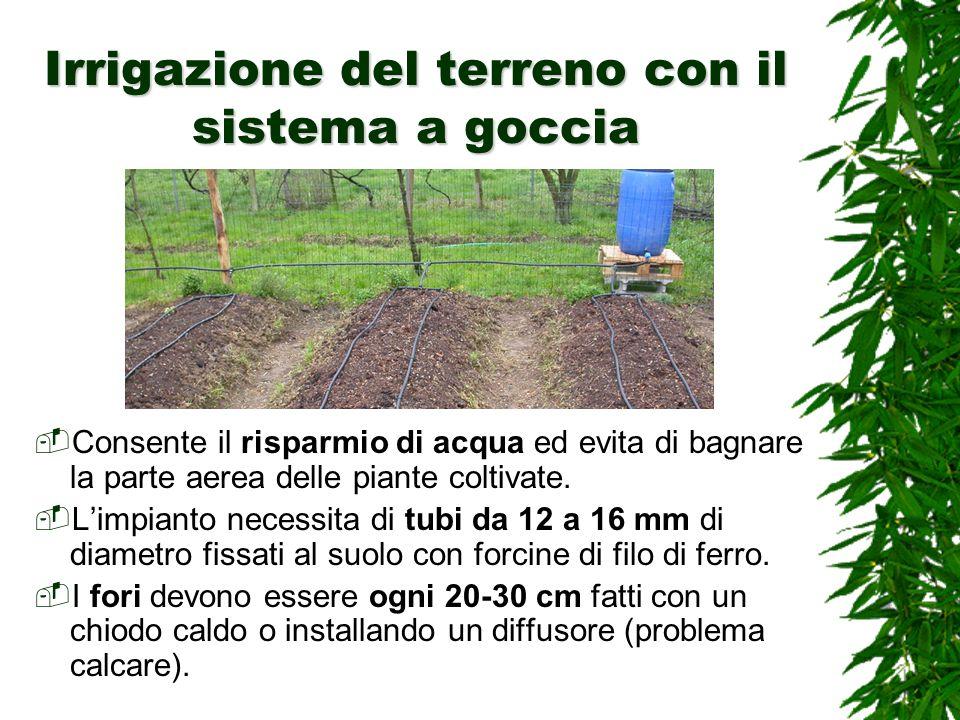 Irrigazione del terreno con il sistema a goccia